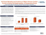 All-Cause Mortality and Incidence of Major Adverse Cardiac Events in Sickle Cell Nephropathy: A Comparative Study by Kunjan Udani, Nayda Parisio Poldiak, Julia Campbell, Victor Collier, and Pooja Patel